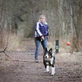 hond chayka (74)