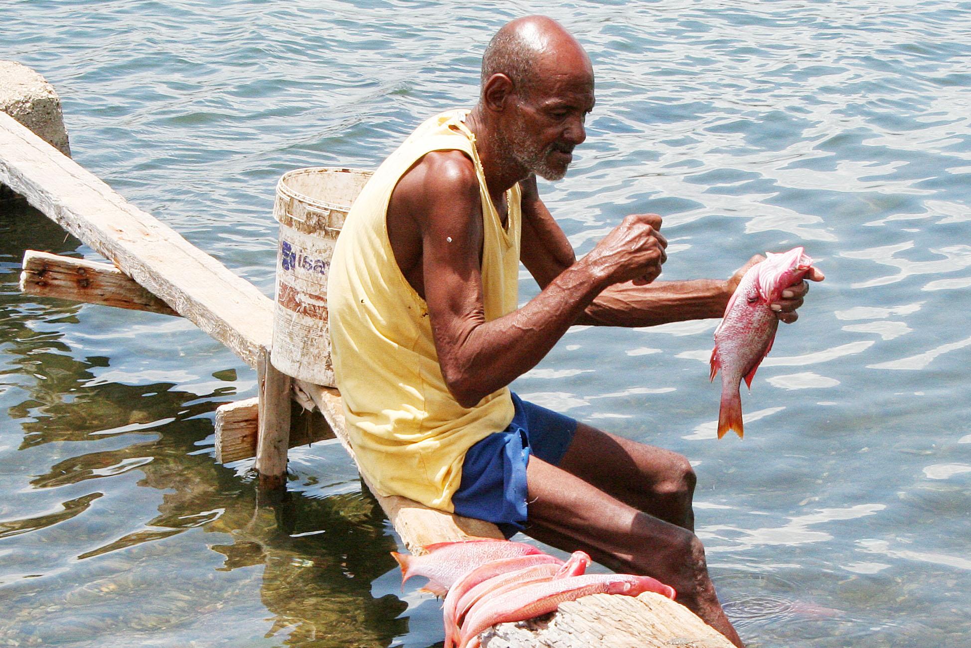 Cuba visser