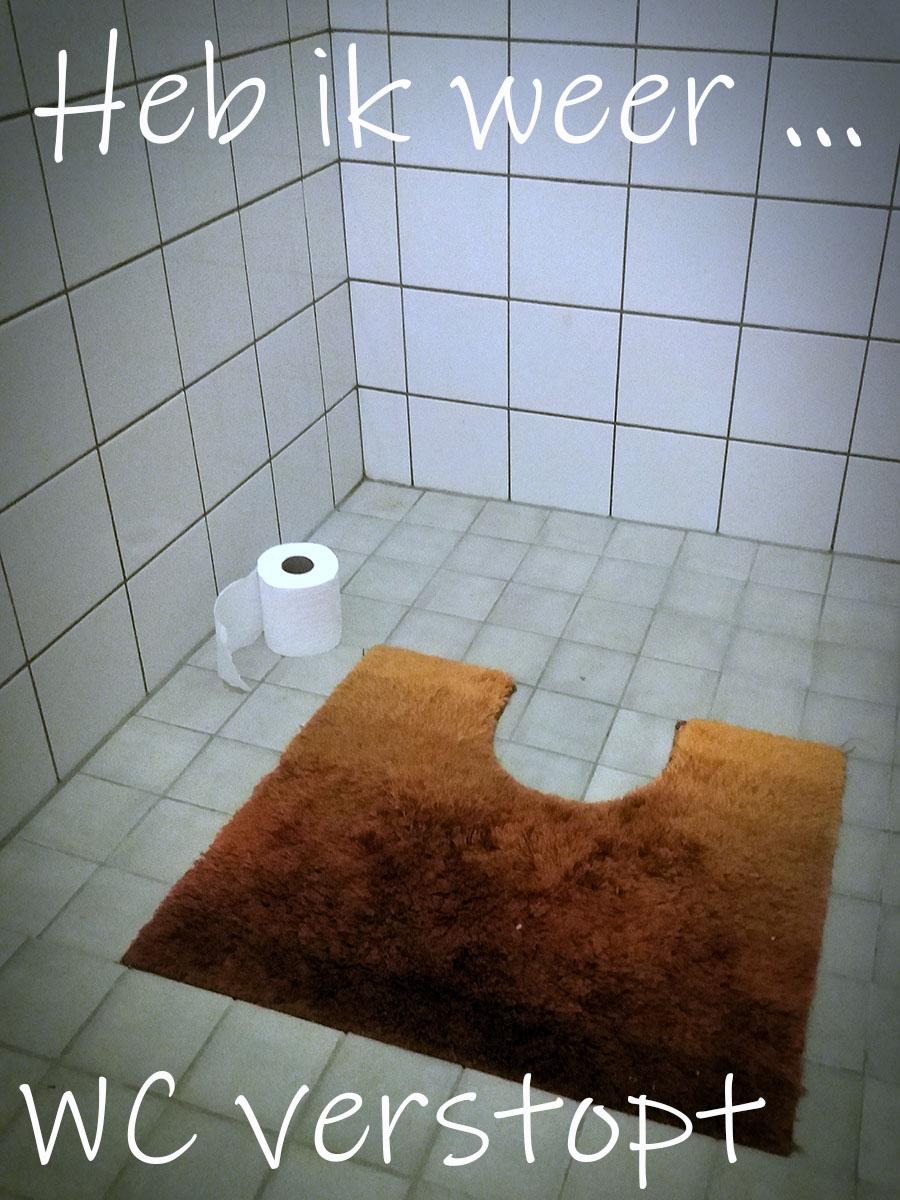 wc verstopt
